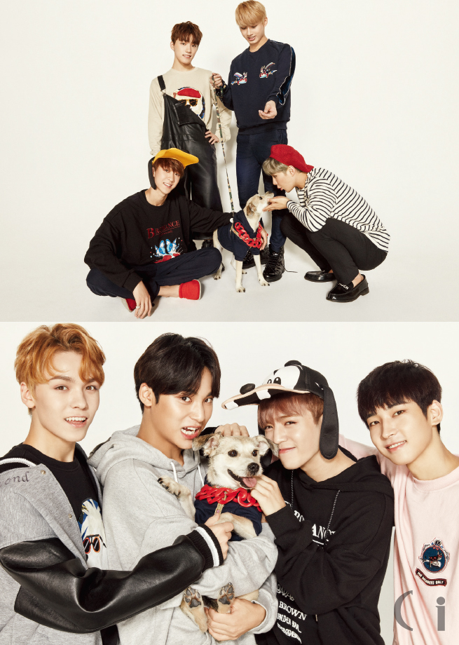official-160929-seventeen-for-ceci-love-pet-donation-campaign-%ec%84%b8%eb%b8%90%ed%8b%b4-%ec%8e%84%ec%94%a8